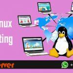cheap linux